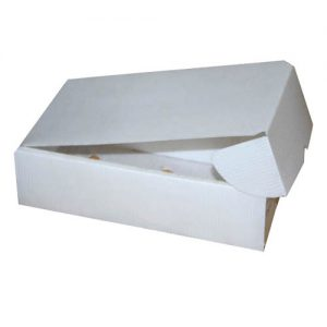کارتن پلاست کوچک 300x300 - محصولات کارتن پلاست